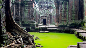 tour to Cambodia from USA