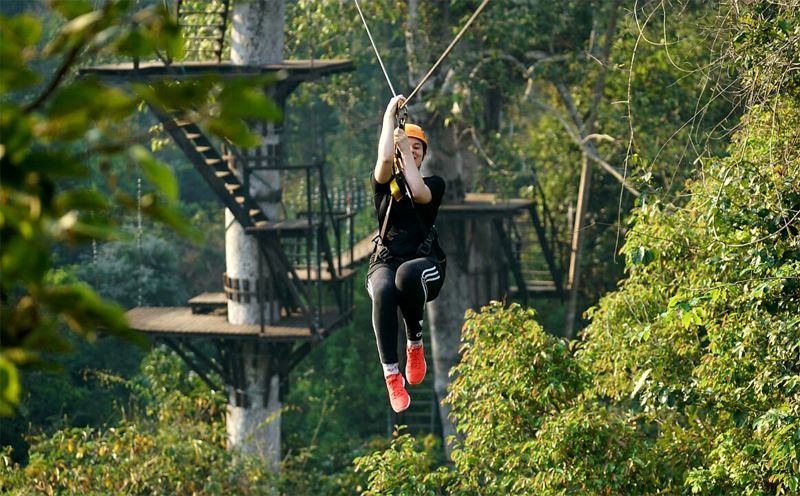 Zipline over the Angkor Archaeological Park