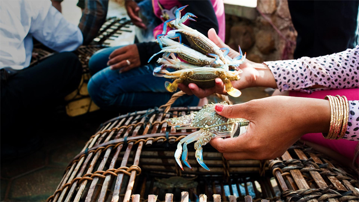Crabs in Kep Cambodia